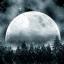 月の雨ライブ壁紙